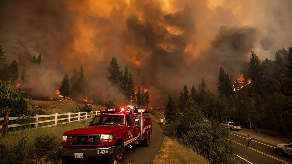 На Западе США бушуют масштабные пожары площадью с Нью-Йорк: видео