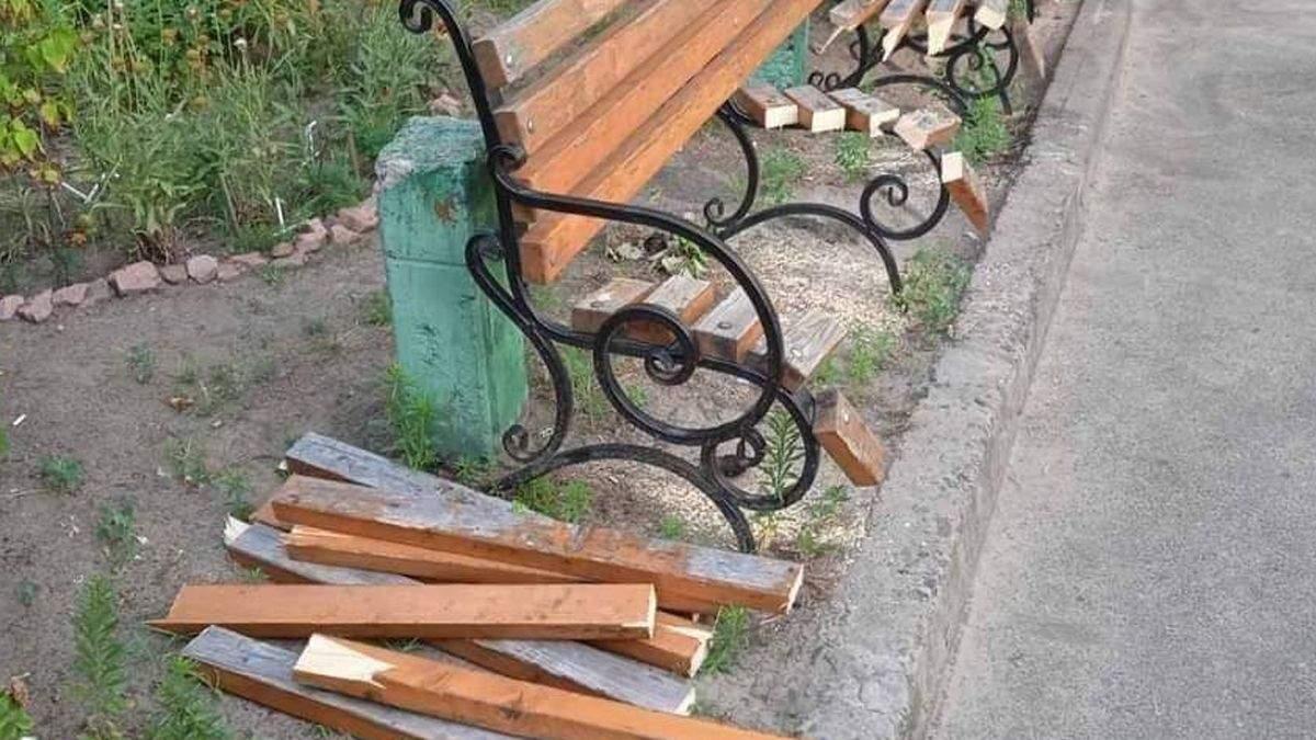 Бабушка объяснила зачем спилила скамейку во дворе в Киеве - 24 Канал