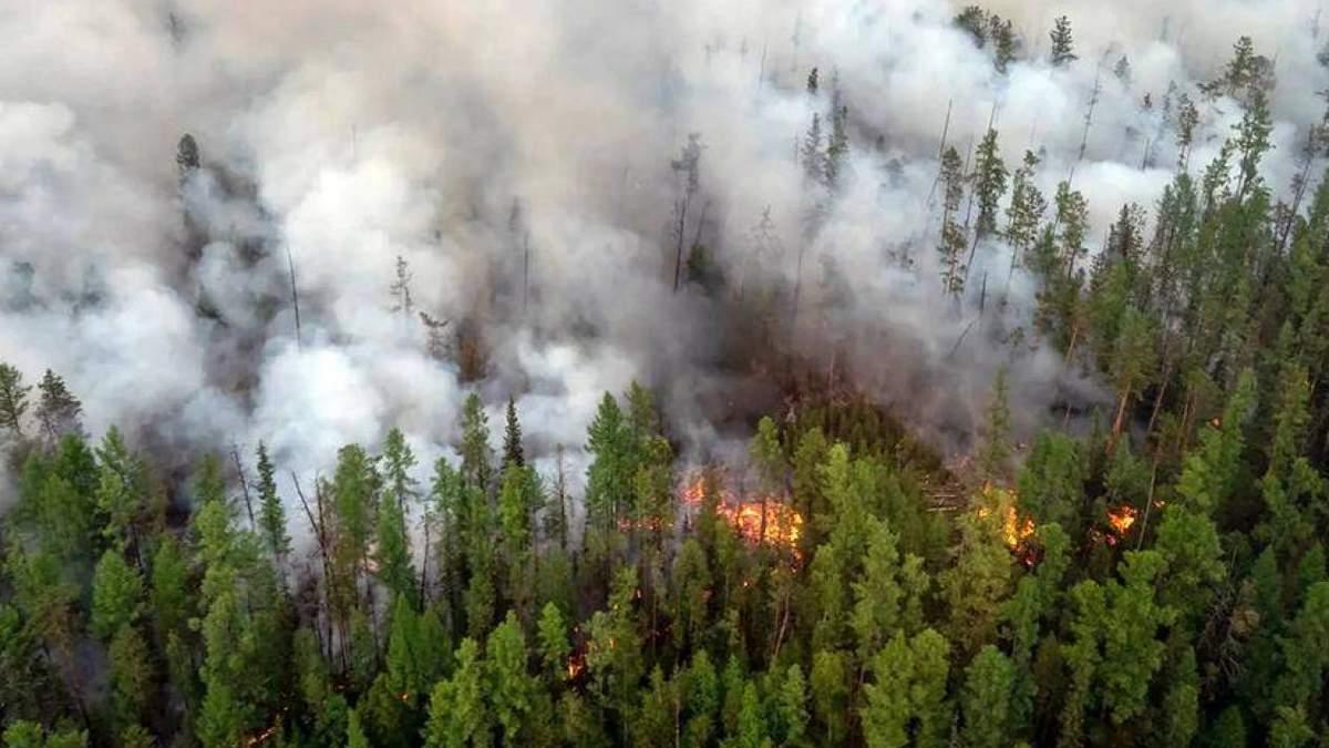 Лісові пожежі з Росії 25.07.2021 перекинулися на сусідню Фінляндію
