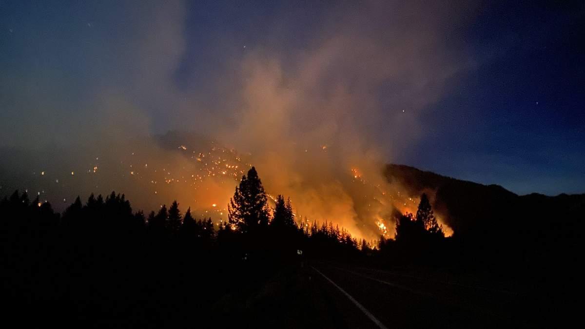 Лесные пожары в США охватили уже 12 штатов: какая сейчас ситуация