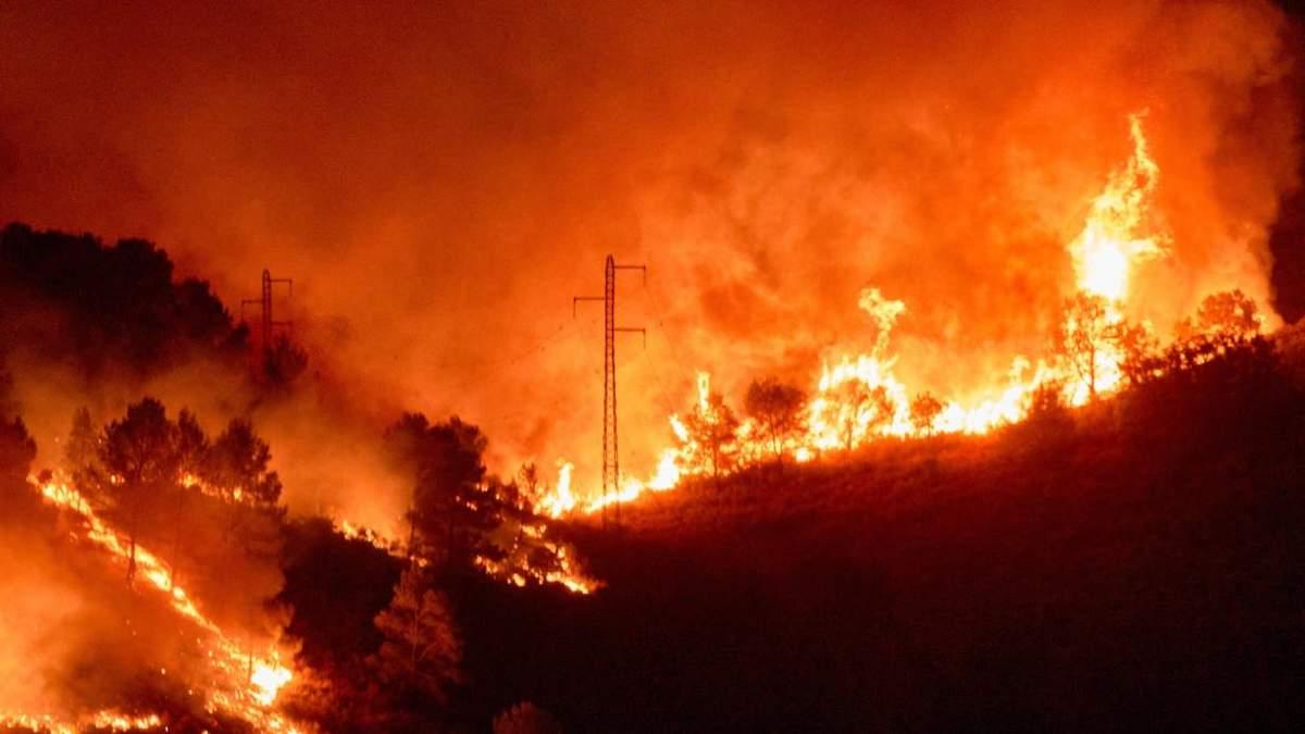 В трех регионах Испании бушуют масштабные лесные пожары