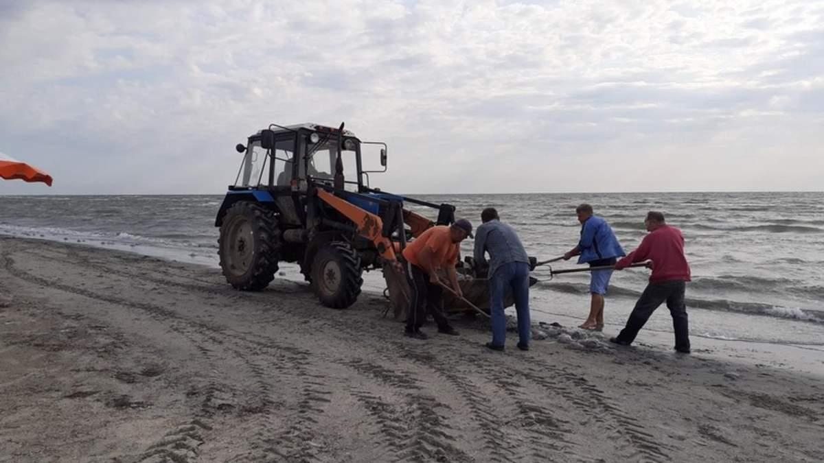 На Арабатці мертвих медуз збирали лопатами і вантажили на трактор: у людей здали нерви - Україна новини - 24 Канал
