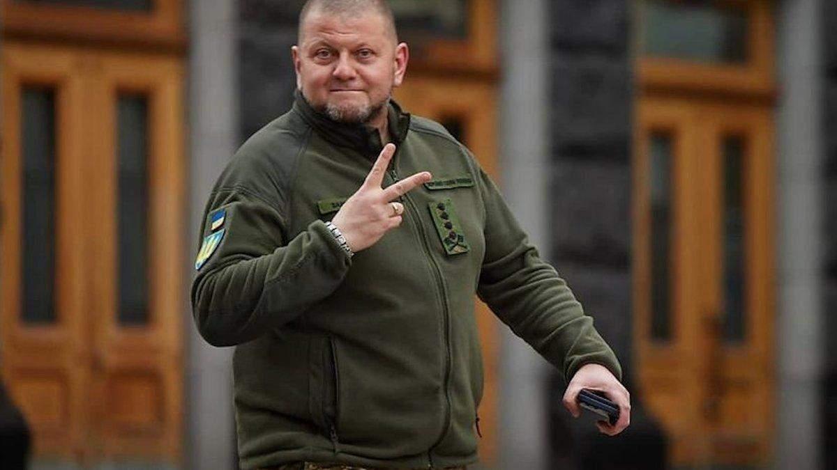 Валерий Залужный – биография нового главнокомандующего ВСУ