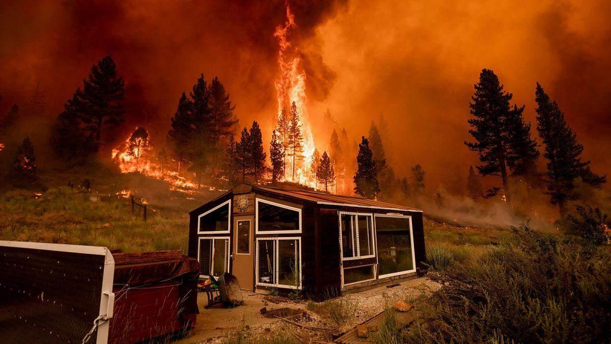 Лісова пожежа в США