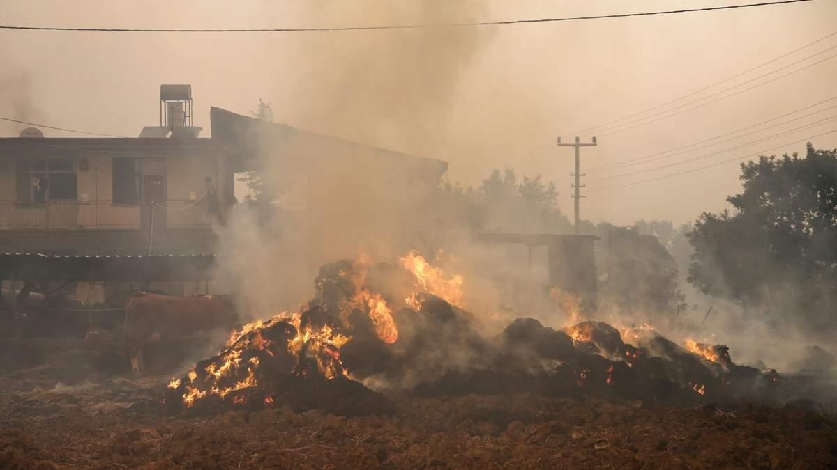 Количество пострадавших в результате пожаров в Турции резко возросло