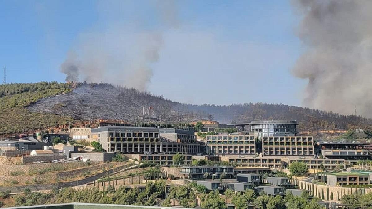 Лесные пожары в Турции: Украина вышлет самолет на помощь