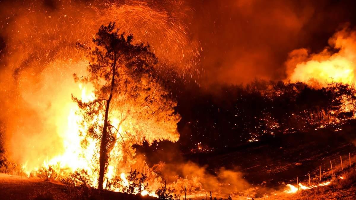 Пожары в Турции 31 июля 2021: видео и фото за сегодня