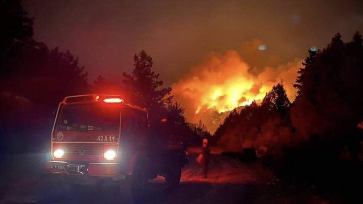 В охопленій вогнем Туреччині ліквідували 88 з 98 осередків пожеж