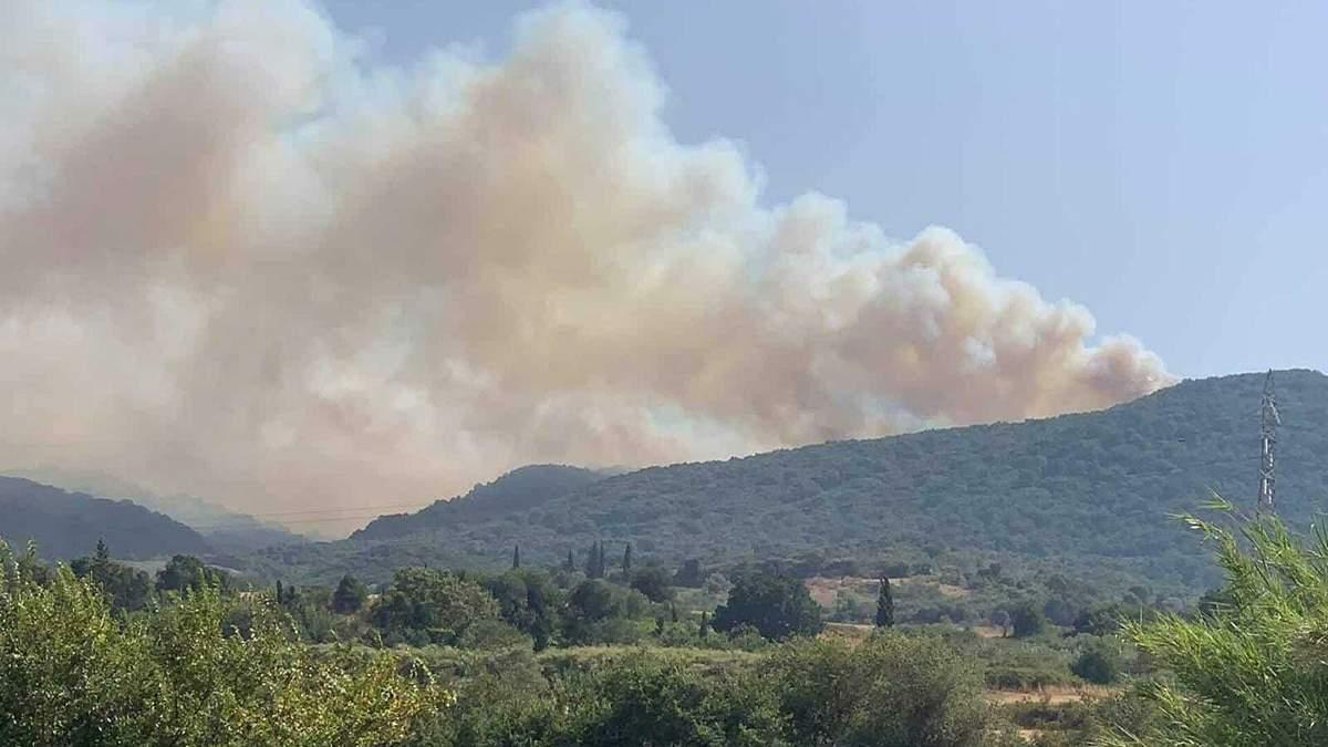 У Греції 31.07.2021 спалахнули лісові пожежі: яка зараз ситуація