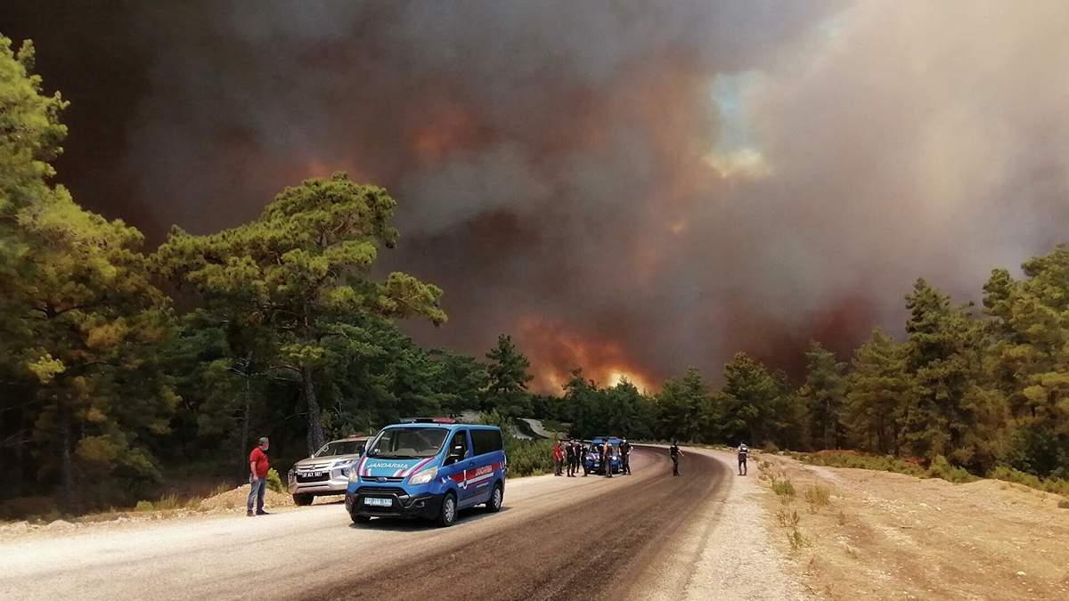 В Турции 31.07.2021 задержали подозреваемого в поджогах лесов