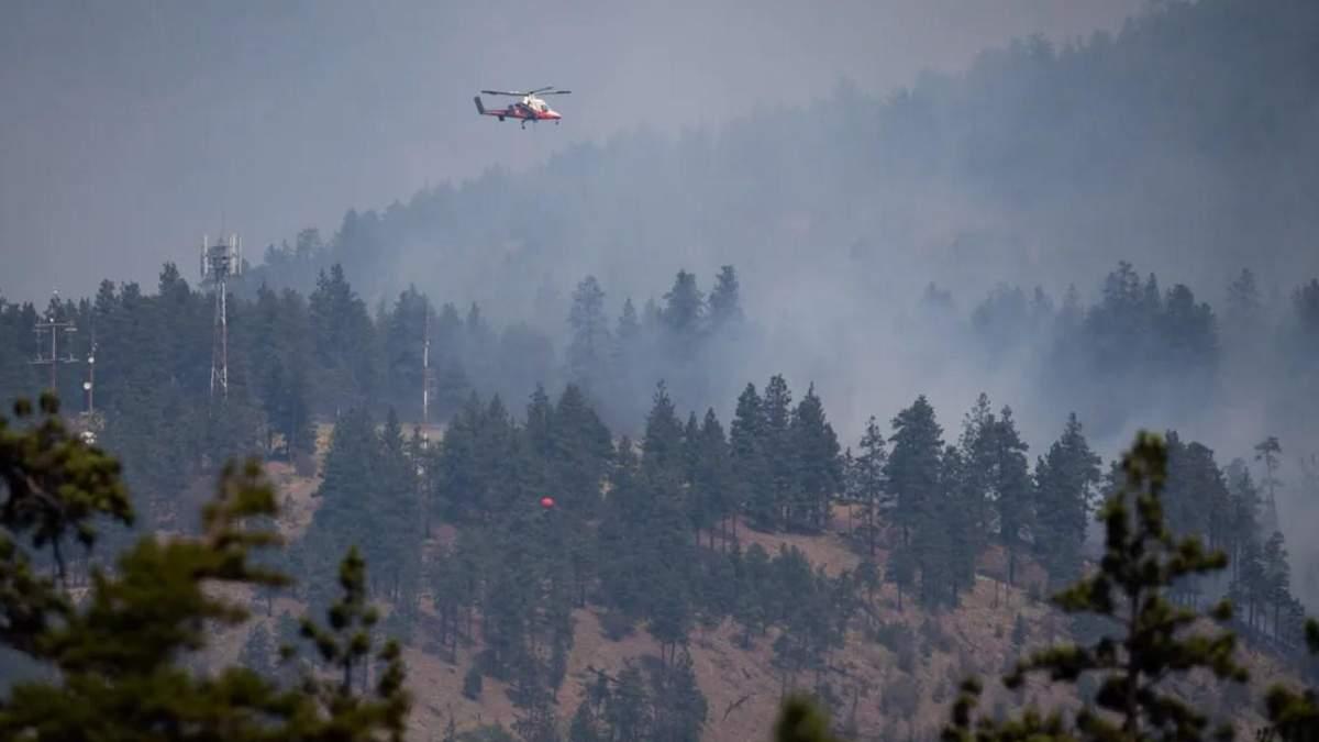 У Канаді спалахнули масштабні лісові пожежі: фото