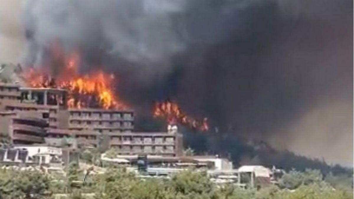 За пожары в Турции взяли ответственность террористы, - СМИ