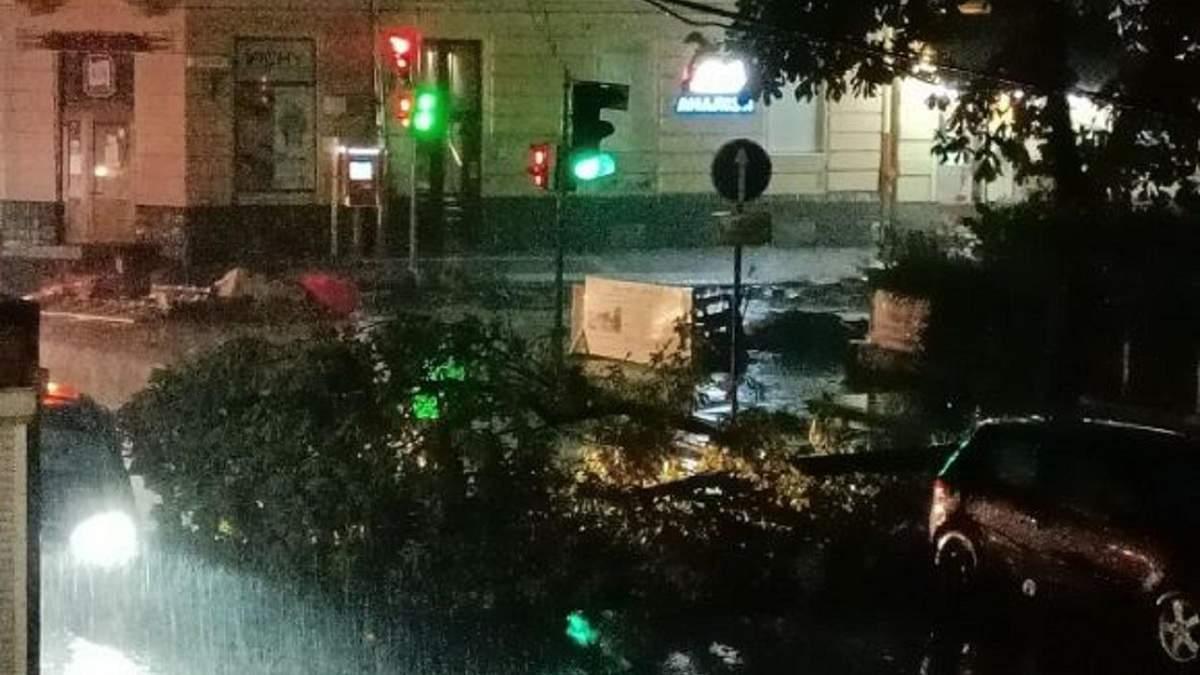 Погибшие, поваленные деревья и разбитые машины: последствия безумного урагана во Львове