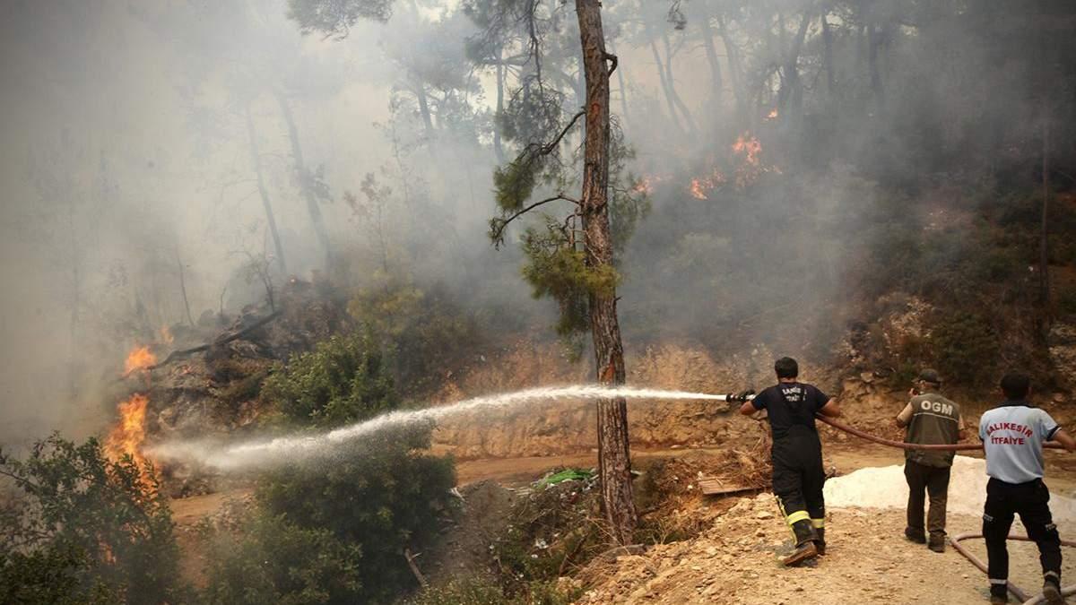 В Турции вспыхнул новый масштабный лесной пожар