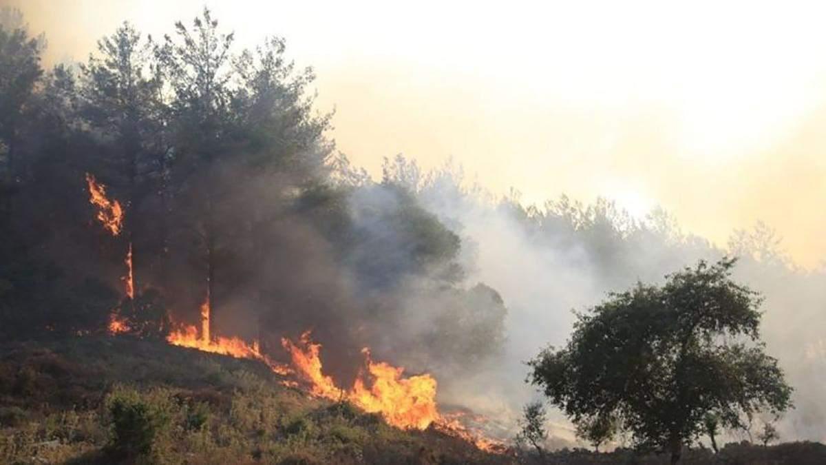 Влада повідомила, що 146 зі 154 пожеж в Туреччині локалізували