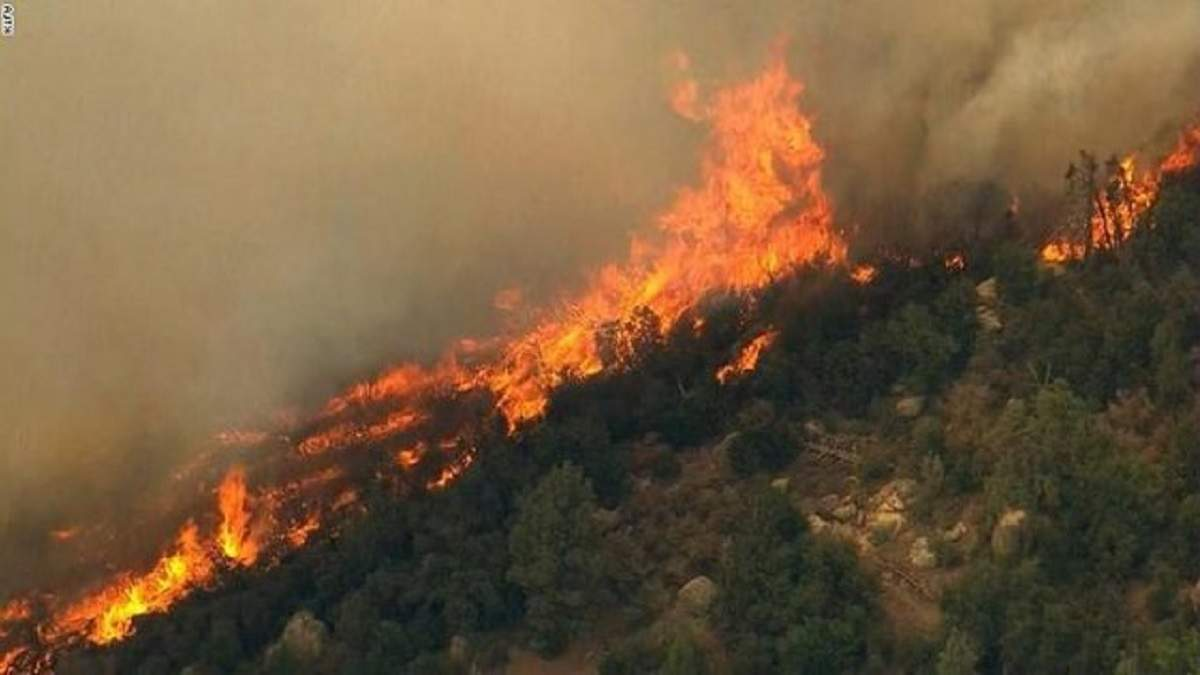 Албанию охватили масштабные лесные пожары: страна не справляется