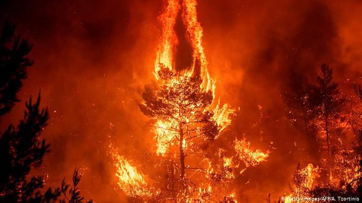 Автомагистраль близ Афин перекрыли из-за лесных пожаров