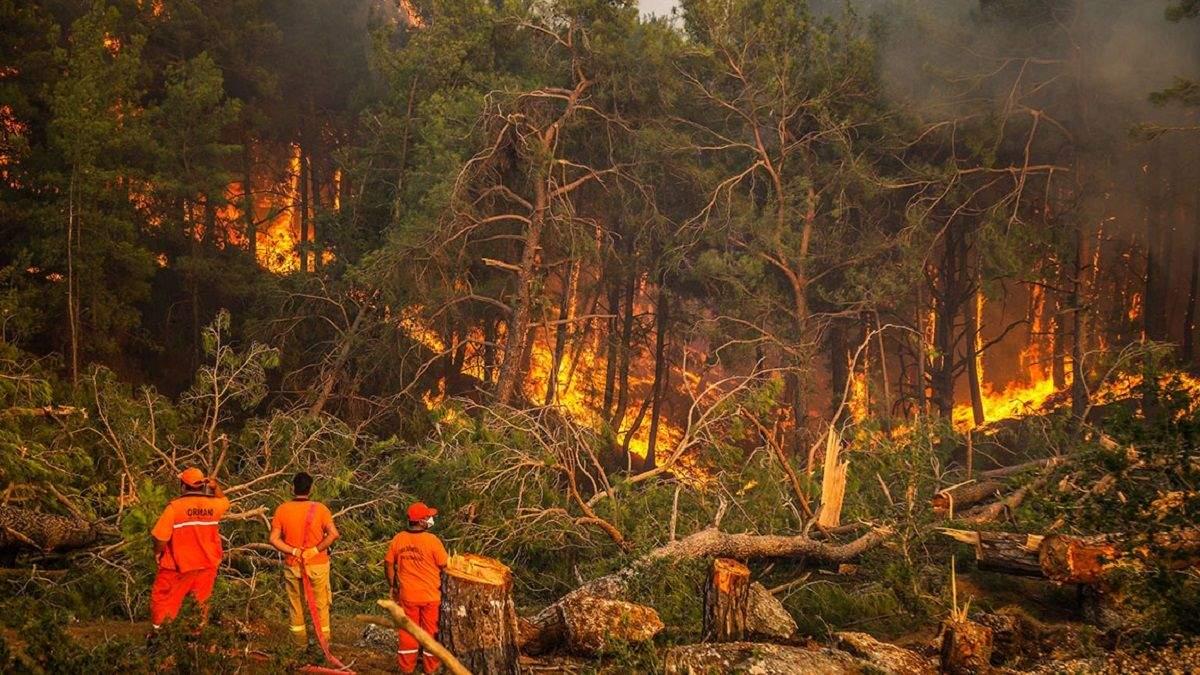 Лісові пожежі в Туреччині: українців довелося евакуювати морем