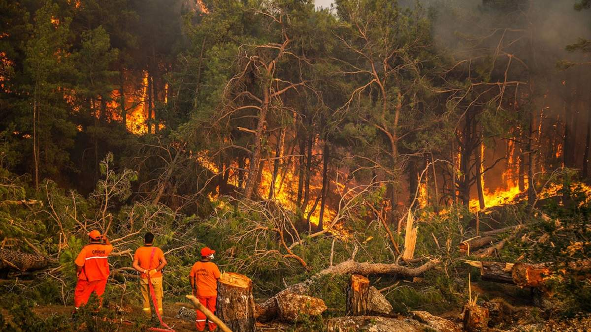 Лесные пожары в Турции: украинцев пришлось эвакуировать морем