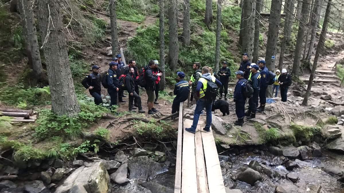 Рятувальники шукають 6-річного хлопчика, що загубився на Говерлі