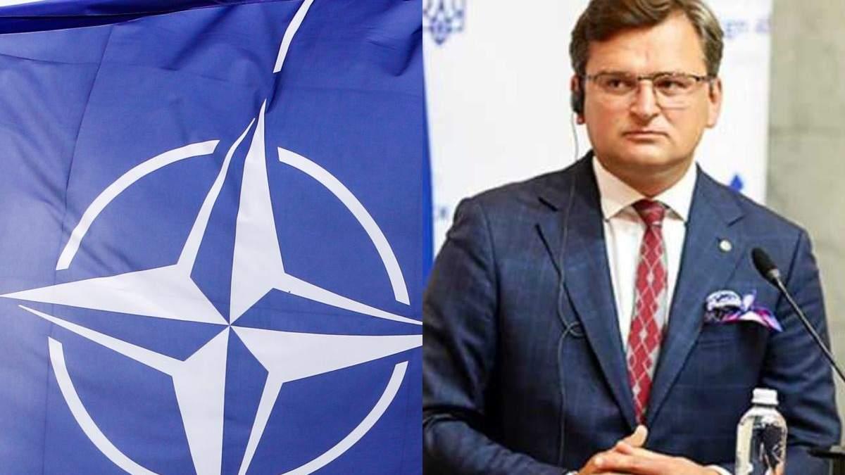 Последняя страна НАТО подтвердила участие в Крымской платформе