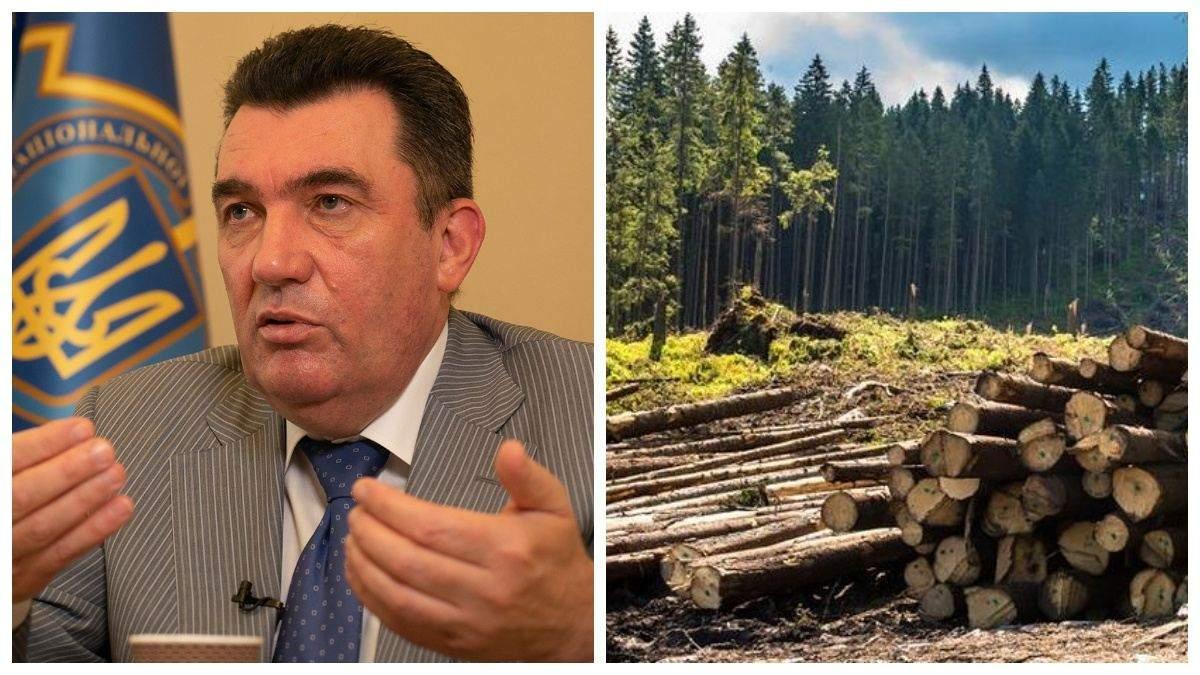"""""""Отрасль кумовства"""": СНБО планирует заняться вопросом вырубки украинских лесов"""