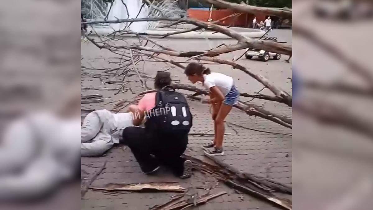 Переломало ноги: дерево упало на мужчину в парке Днепра – жуткое видео с места