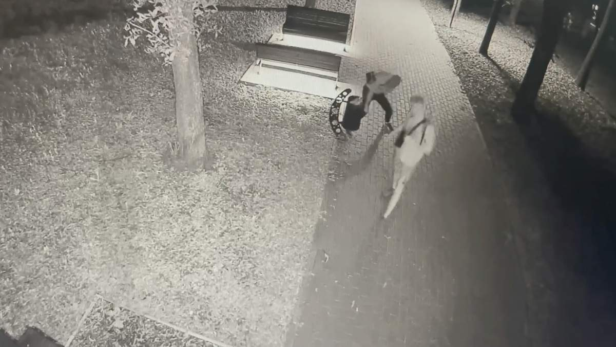 За 30 минут сломали 16 урн: дерзкое хулиганство в харьковском парке сняли на видео