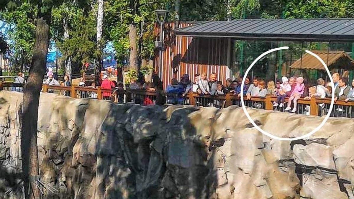 Ведмідь ходив поряд: дітей посадили на огорожу вольєра Харківського зоопарку - Україна новини - 24 Канал