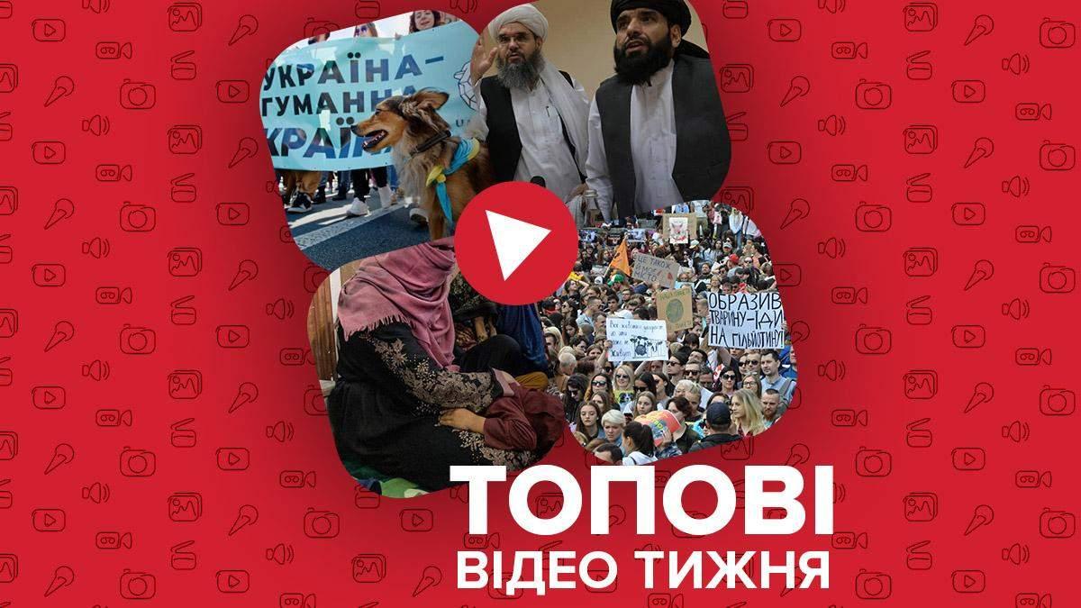 """""""Талібан"""" обмежує права жінок, Марш за тварин у 30 містах України – відео тижня - Новини Харків - 24 Канал"""