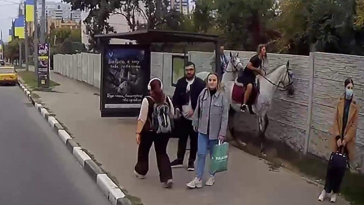Конь разбил стеклянную остановку в Харькове: видео инцидента