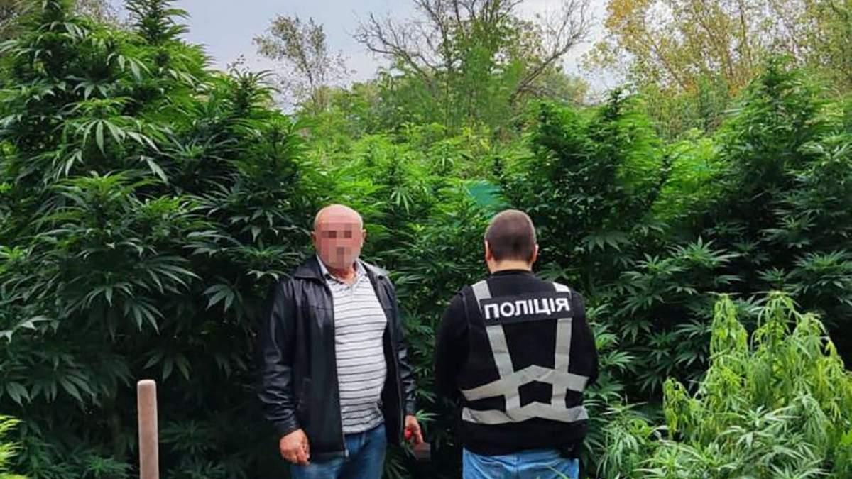 На Житомирщине мужчина поставлял каннабис через собственный канал в Киев