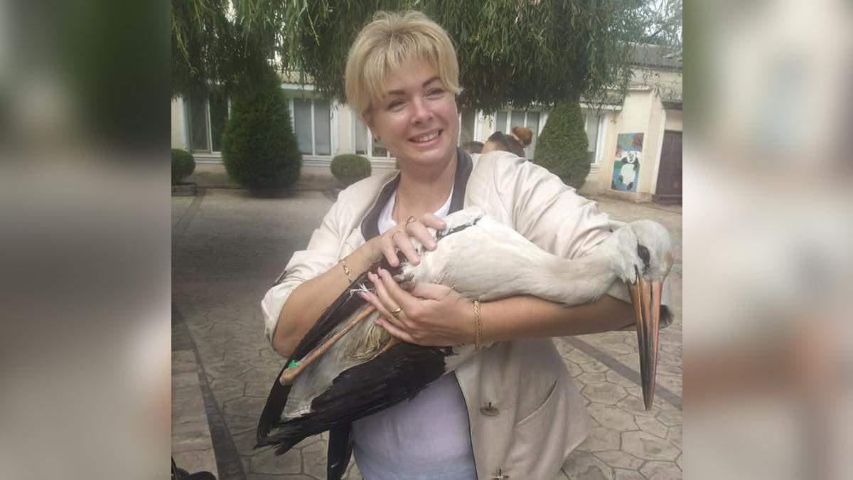 Врятували ручного лелеку: розповіли неймовірну історію птаха з Одещини - Україна новини - 24 Канал