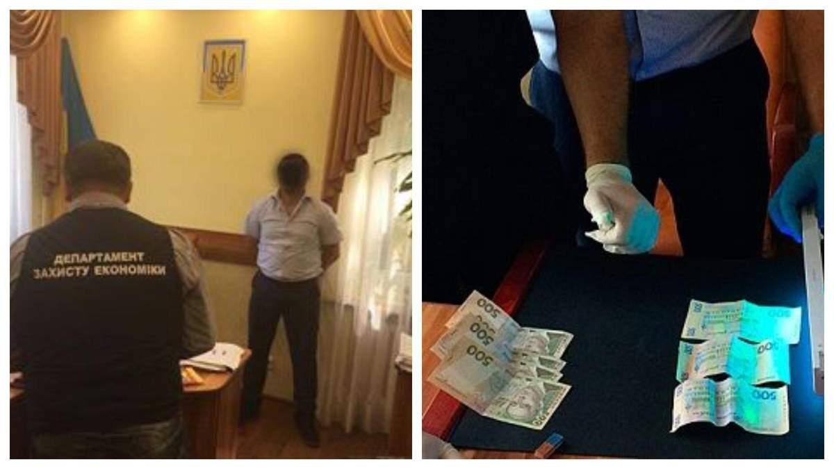 Судья из Мукачево получил 7 лет тюрьмы за взятку в 2000 гривен - Украина новости - 24 Канал