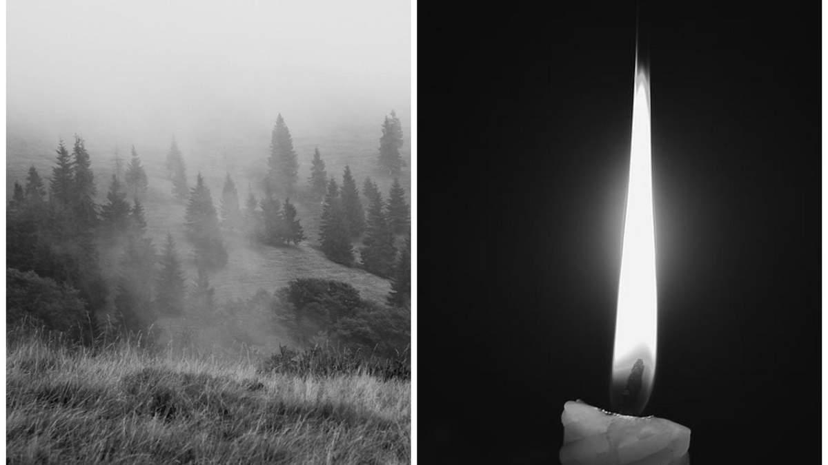 Пішли по гриби і не повернулись: на Прикарпатті знайшли тіла двох чоловіків - Новини Івано-Франківськ - 24 Канал