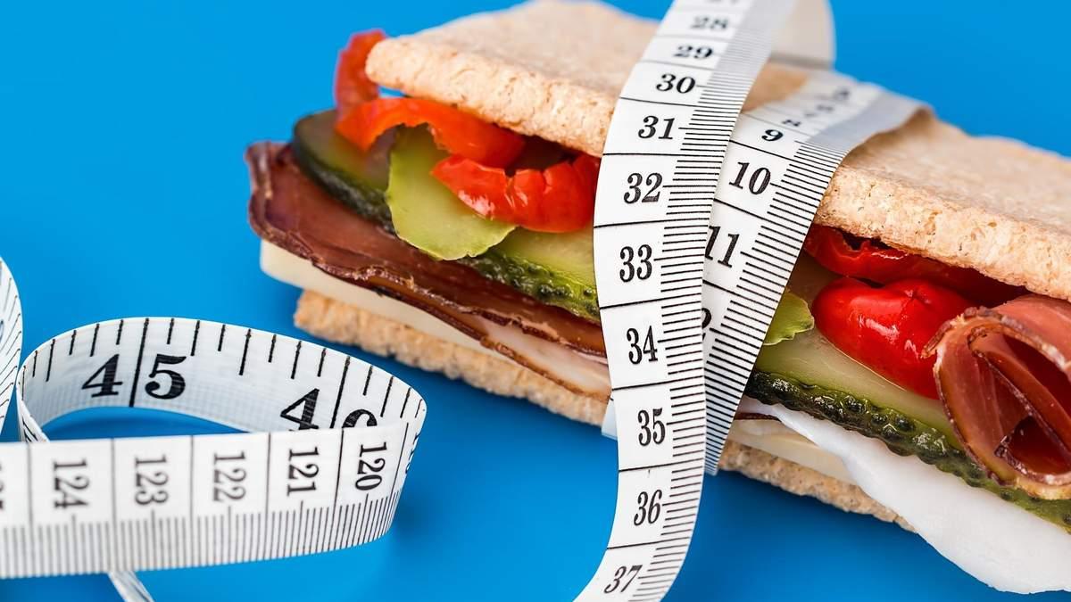 Собираем ребенка в школу: каким должен быть идеальный бутерброд - 24 Канал