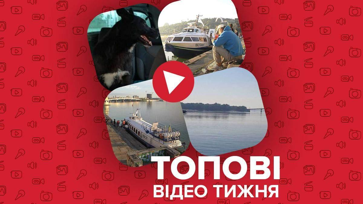 """Запуск """"Ракети"""" по Дніпру, відчайдушний собака-плавець – відео тижня - Новини Одеси - 24 Канал"""