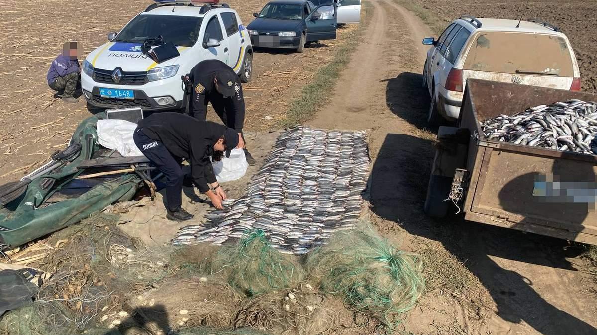 Під Одесою викрили рибних браконьєрів, які завдали державі майже 2 мільйони збитків - Новини Одеса - 24 Канал