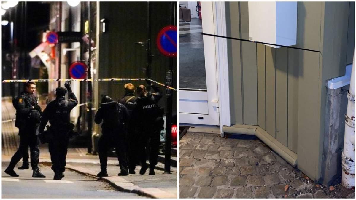 Невідомий у Норвегії застрелив людей з лука: його затримала поліція - 24 Канал