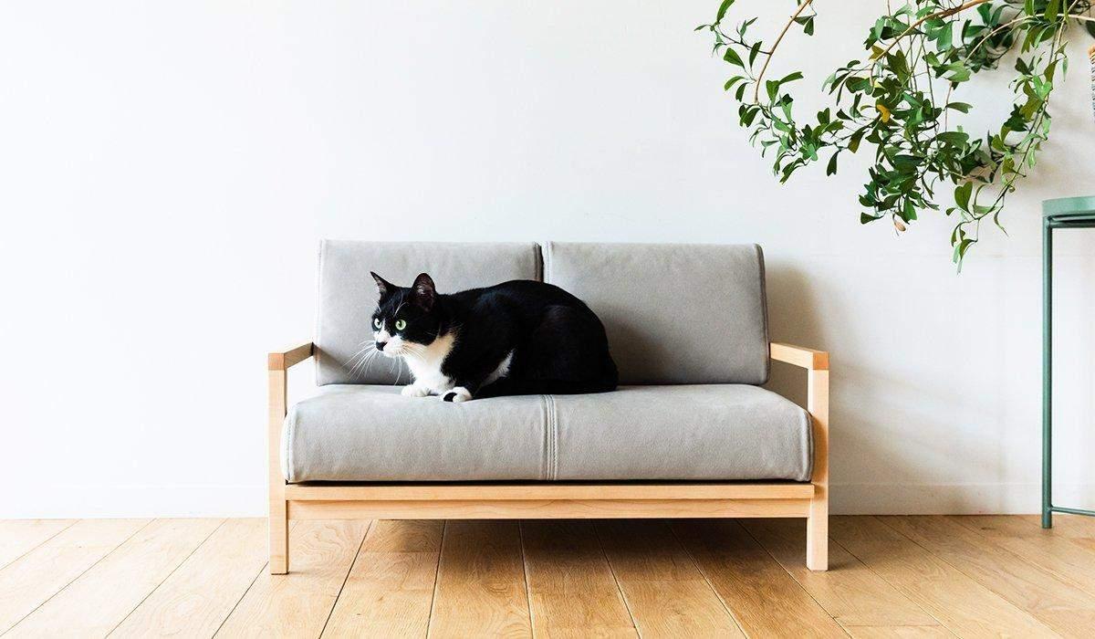 Диван для котів