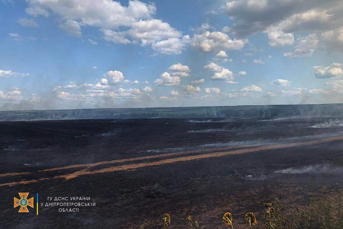 Пожежа на полі на Дніпропетровщині
