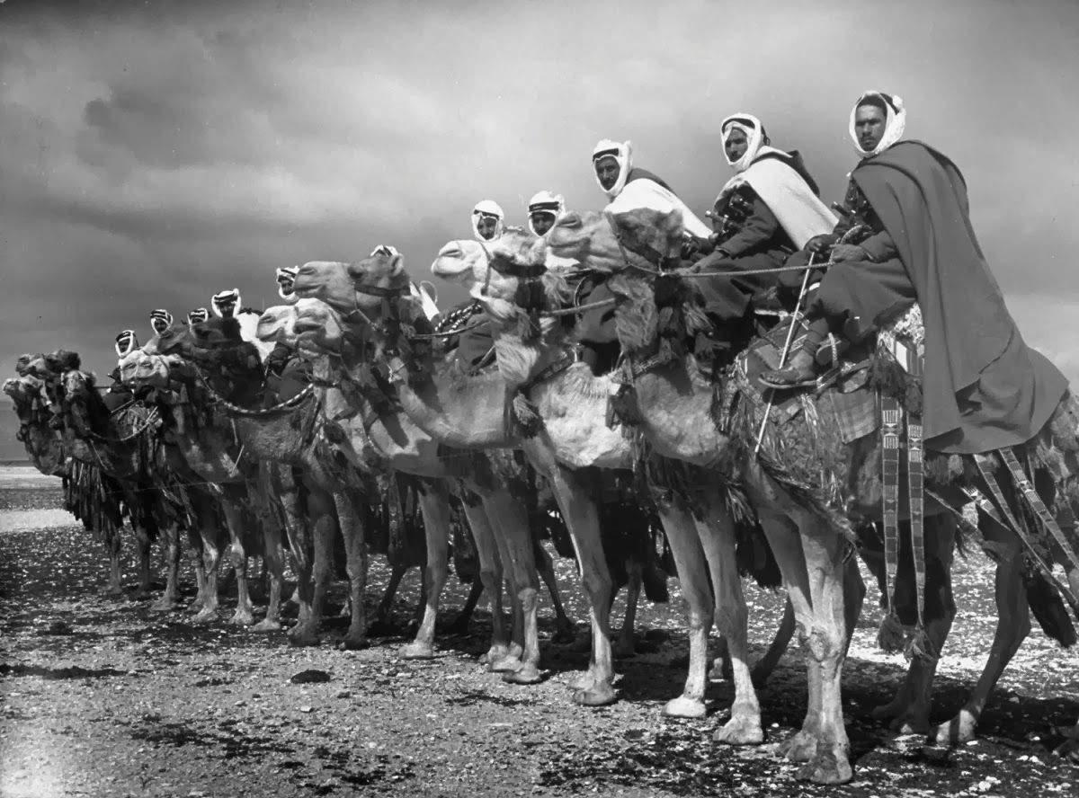 військо арабів