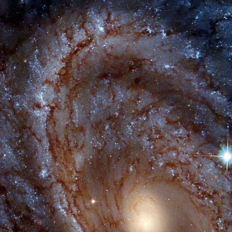 Галактика NGC 4603