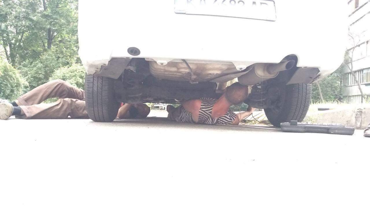 Змея залезла в дно авто