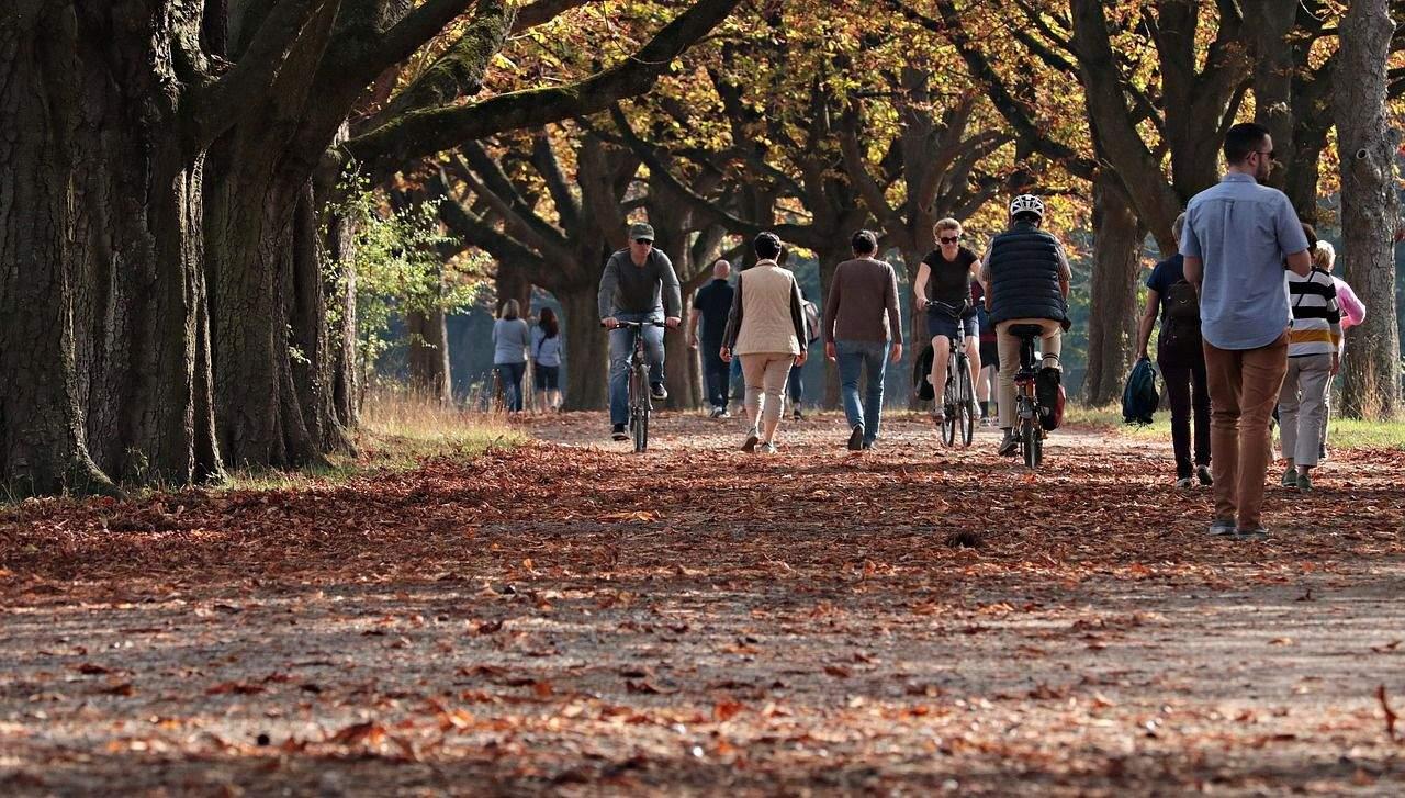 Регулярні прогулянки покращують фізичний та емоційний стан