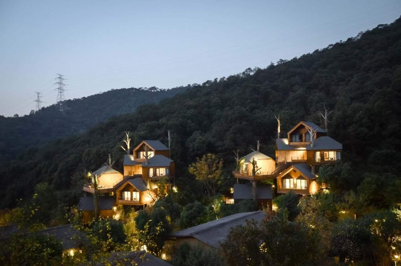 Світло з курорту виглядає казково у лісі / Фото Beautiful Life