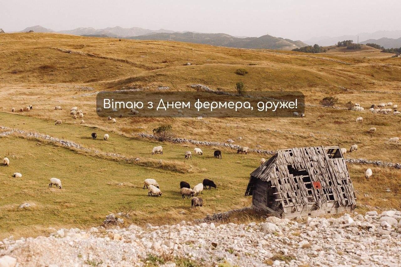 День фермера 2021 в Україні листівки