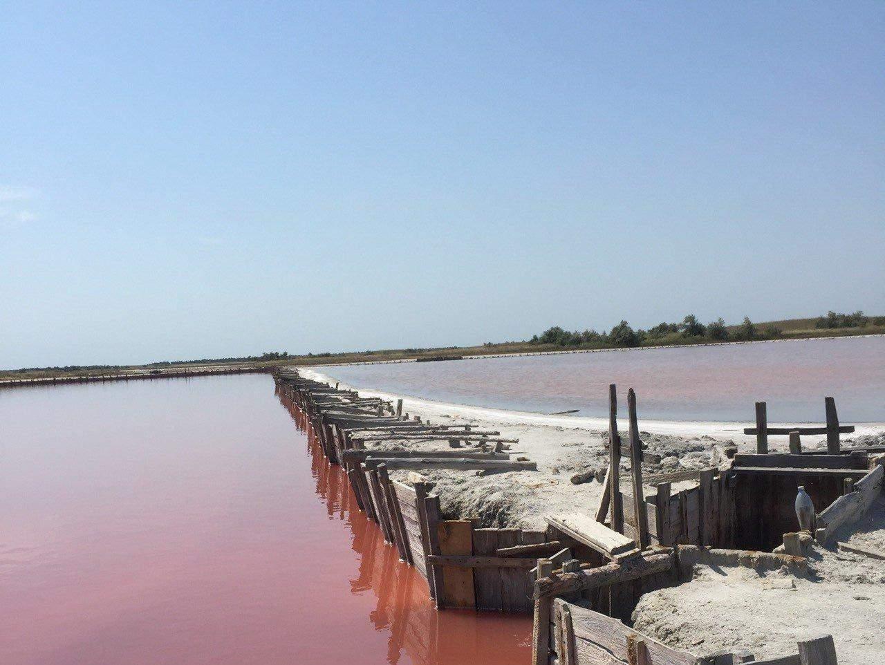 Рожеві озера
