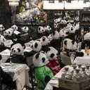 Панди замість відвідувачів: у німецькому ресторані креативно протестують проти локдауна