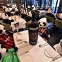 Плюшеві панди за столами: ресторатор влаштував незвичний протест – відео